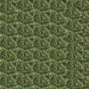 Grass_diffuse