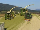 Mais_biogas_zeltweg_24_bis_30-sept-2007_-_281
