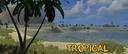 Tropical-farm--2