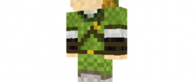Link-skin