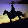 Cowboy--2