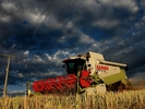 Lukster_lexion780