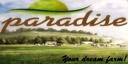 Paradise-final-edition--3