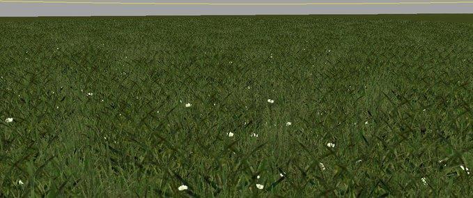 Grass-texture--5