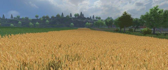 Weizen-gersten-textur