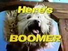 Boomer34