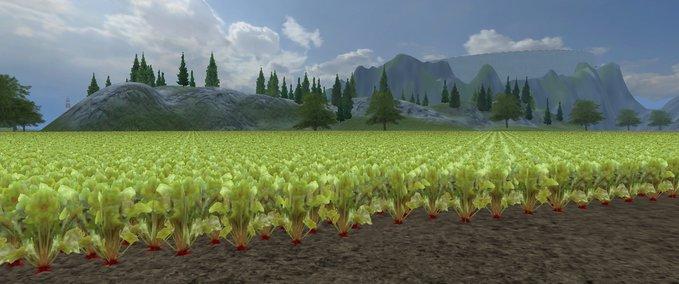 Crop fodder beet v 1.0 image
