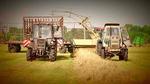 Landwirtschaft-der-ddr