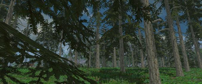 Forest Sound v 1.0 image