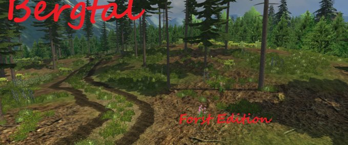 FS 2013: Mountain valley forest Edition v 1 1 Maps Mod für