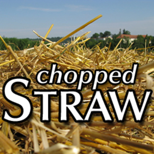 http://images.modhoster.de/system/files/0061/7244/huge/choppedstraw.jpg