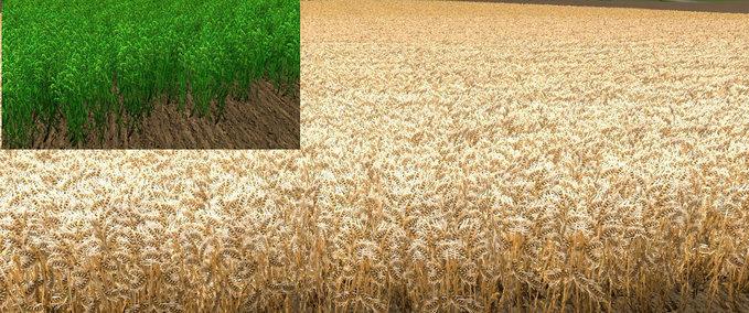 Nova-textura-wheat-barley