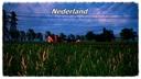 Nederland--5