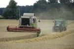 Landwirt124