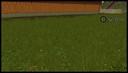 Grass-textur--4