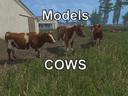Modelle-kuhe