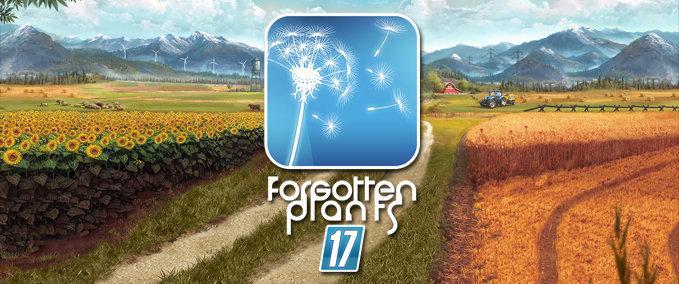 Forgotten-plants-landscape