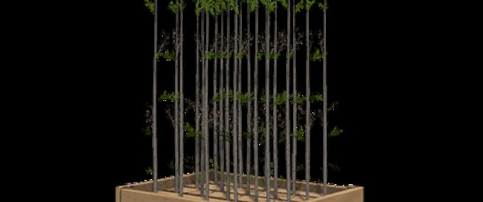 More-saplings