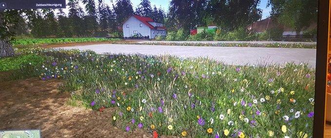 Grass-textur--6