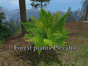 Forest-plants