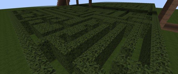 Labyrinth--10