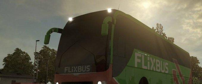 Man-lions-coach-flixbus-skin-1-30-x