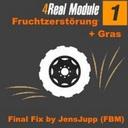 4-real-modul1-fruchtzerstorung