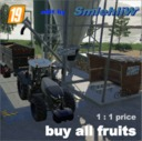 Buy-all-fruits-1-1-price