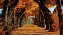 Fs19-autumn-herbst-2019-menu-background-by-crowercz