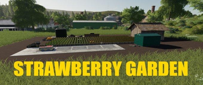 Strawberry-garden