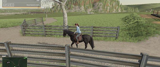 Fs19-black-ranch-fencing